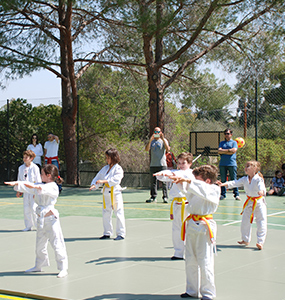 Edelweiss extracurricular Judo